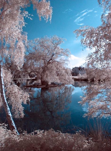 Pirbright pond
