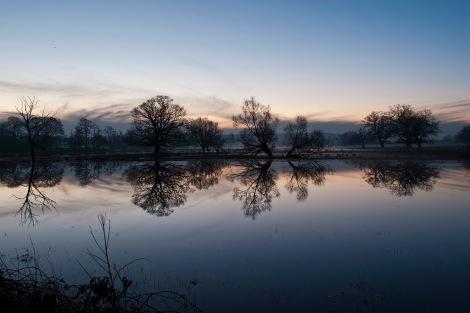 3 flooded fields